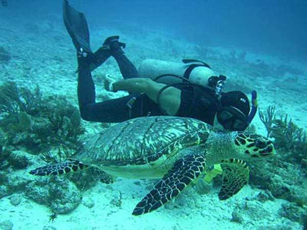 buceo-en-cancun